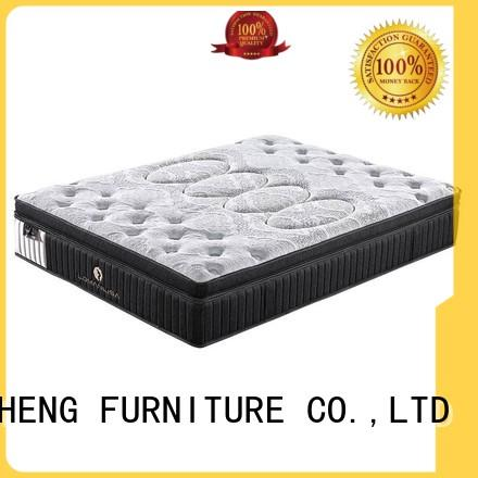 top mattress in a box reviews cost with elasticity